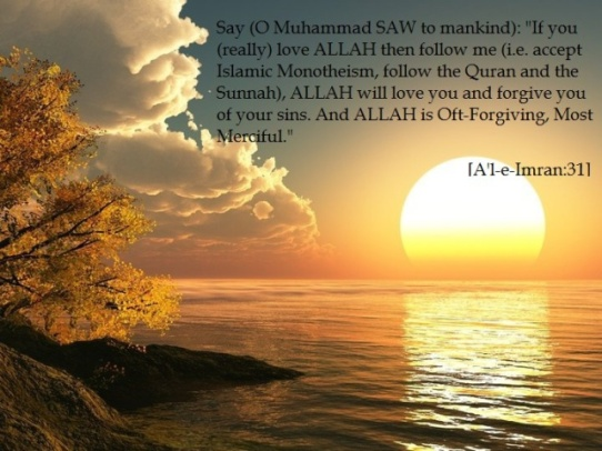 love Allah follow His Prophet