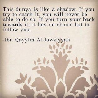 dunya-shadow-