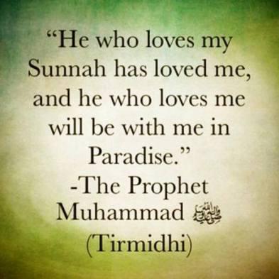 love the Sunnah