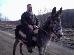 SE and donkey