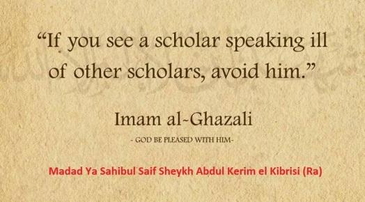 speaking ill of scholars
